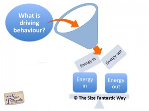 what drives behaviour | www.sizefantastic.com.au